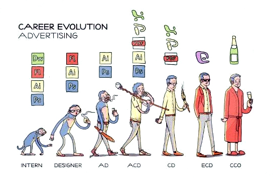career_evolution