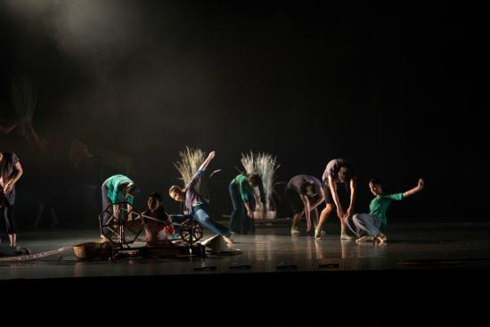 the-mist-dance-show (2)